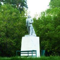 Михайловск. Памятник Ленину., Михайловск