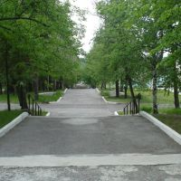 Аллея, Нижние Серги