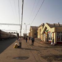 На перроне ЖД вокзала Нижний Тагил.05.06.10, Нижний Тагил