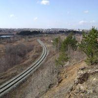 Вид на реку туру и её окрестности, Нижняя Тура