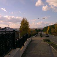 Дорога, Нижняя Тура
