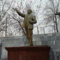 памятник Ленину, Новая Ляля