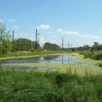 болото около жд, Новая Ляля