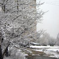 Первомайская пурга. Двор на Советской. Snowstorm on May 1, 2009. Sovetskaya str., Первоуральск