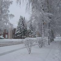 ул.Цветников г.Ревда, Ревда