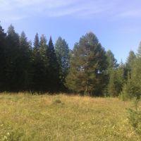 полянка за Дублером, Североуральск