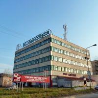 """Североуральск. Кафе """"Альянс""""., Североуральск"""