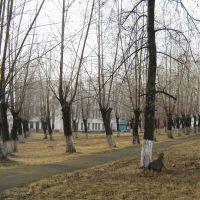 Дворец культуры металлургов, Серов