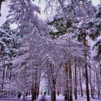 В парке, Среднеуральск