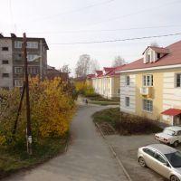 Осень и кот на дереве напротив, Среднеуральск