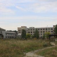 Комплекс зданий районной больницы, Сысерть