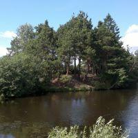 Тугулымский пруд, Тугулым