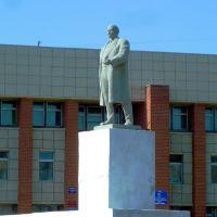 Туринск. Ленин на центральной площади., Туринск