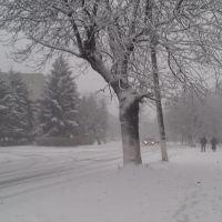 снегопад 29.11.11, Беслан