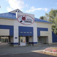 Музыкальная школа, Десногорск
