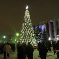 Новый 2013 год!, Десногорск