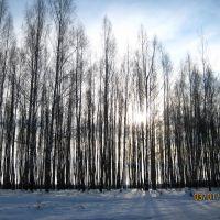 Десногорск, Десногорск