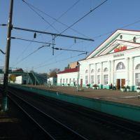 Вязьма - вокзал, Вязьма