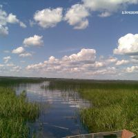 Озеро у дер. Бондарево, Голынки