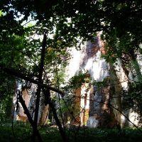 забытый храм, Голынки
