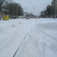 Nikolaeva str, Голынки