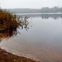 озеро Афанасьевское, Голынки