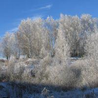 Зима в Дорогобуже, Дорогобуж
