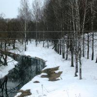 Вид из окна дизель-поезда Смоленск-Фаянсовая, Ельня, Смоленская область, Ельня
