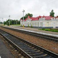 Железнодорожный вокзал Ельня, Ельня