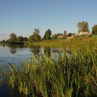 Desna river, Yelnya, Ельня