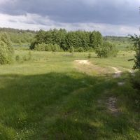 д. Сосонки, спуск к реке Ипуть (в начале деревни), Ершичи