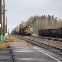 у вокзала, Новодугино