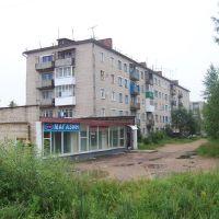 Улица Строителей, Починок