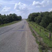 дорога возле д. Проверженка, Починок