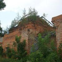 Руины Храма Пресвятой Богородицы., Рославль
