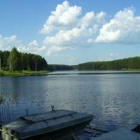 Озеро в Лазовице, Шумячи