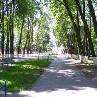 Центральный парк, Шумячи