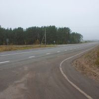 Дорога к мосту через Сож, Шумячи