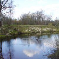 река Надва, Клетнянский р-н, Брянская область, Россия. Апрель 2007 года, Шумячи