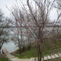 Весна в Солнечнодольске, Солнечнодольск