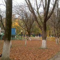 Осень в городском парке, 2013, Изобильный