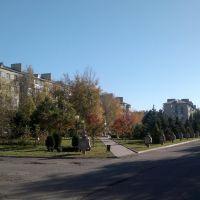 Ул. Ленина, 2013., Изобильный