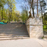 барсы на входе в парк, Железноводск
