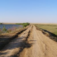 старый пруд, Арзгир