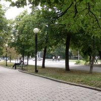 Октябрьская. Зоомагазин_2011, Георгиевск