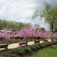 ИПАТОВО весна 2012, Ипатово