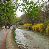 Вдоль реки в парке, Кисловодск