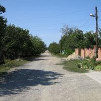 Село Кочубеевское, улица Вольная, вид на ЮЗ, Кочубеевское