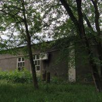 Купол и колокола Курсавской церкви., Курсавка