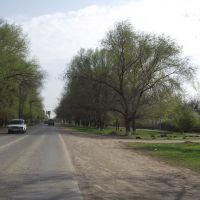 с.Левокумское, Левокумское